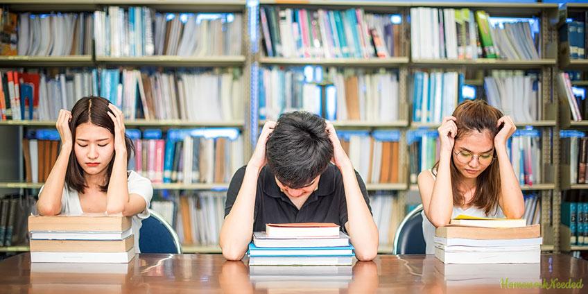 Student Falis